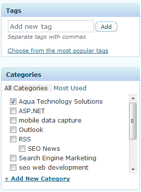 WordPress Categories & Tags